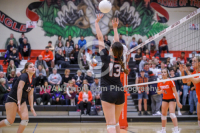 Gallery: Volleyball Mountlake Terrace @ Archbishop Murphy